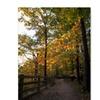 Kurt Shaffer 'Perfect End to an Autumn Day' Canvas Art