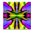 Amy Vangsgard Paradise Purple and Yellow Canvas Print