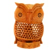 Lucky Handcrafted Mother of Owl and Baby Owl Inside - Unique Holiday Christmas Gift 6 Inch
