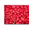 Ariane Moshayedi 'Tomatoes' Canvas Art