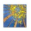 Roderick Stevens Aspen Sky Canvas Print
