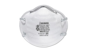 3M N95 Particle Respirator 8200 Mask (20-Pack)