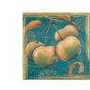 Daphne Brissonnet Lovely Fruits III Canvas Print