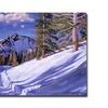 David Lloyd Glover Snow Mountain Road Canvas Print