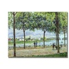 Alfred Sisley The Avenue of Chestnut Trees II Canvas Print