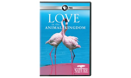 NATURE: Love in the Animal Kingdom DVD 4b8f90d7-69a0-4111-beca-7706a9d954c0