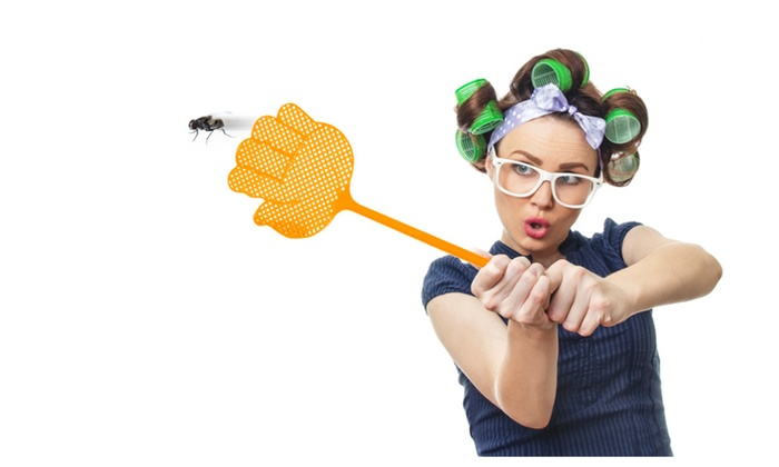 Buy It Now : Fly Swatters-Pest Control Products, Get Rid Of Flies - Pack of 5