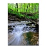Kurt Shaffer Valley Stream Canvas Print