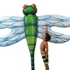 "Dragonfly 105"" Float"