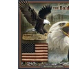American Expedition Square Tin Art Sign - Bald Eagle