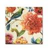 Lisa Audit Rainbow Garden II - Cream Canvas Print