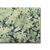 Ariane Moshayedi 'Full Bloom' Canvas Art