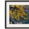 Yellow Leaves2 by Nejdet Duzen