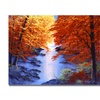 David Lloyd Glover Misty Blue Morning Canvas Print