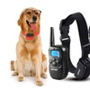 Rechargeable Wireless Dog Training Shock collar 100LV Shock for 2 Dog