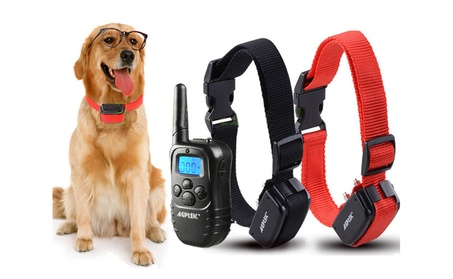 Rechargeable Wireless Dog Training Shock collar 100LV Shock for 2 Dog 13bf76d9-059b-4814-9c41-1d7c0dd08af3