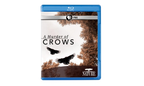 NATURE: A Murder of Crows Blu-ray f1d1e7bd-96a8-4edd-9465-6f4837e9d6c3