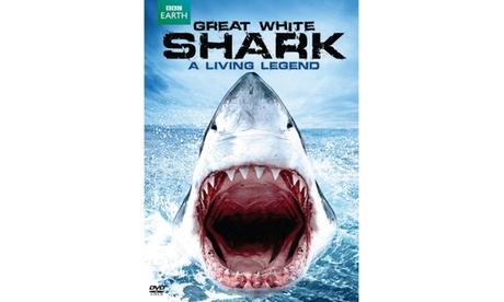 Great White Shark - A Living Legend (DVD) dbd7e7c6-3aee-4c93-8f1c-9074f2c7b2b7
