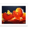 Cecile Baird 'Mandarin Orange' Canvas Rolled Art
