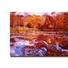 David Lloyd Glover Scarlet Maples Canvas Print