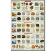 Introduction to Rocks Geology Educational Science Chart Poster