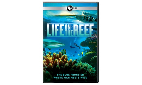 Life on the Reef DVD 7ffffed3-d2a8-4029-be95-1d221e0bf756