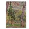 Vincent Van Gogh The Park at Saint-Paul Canvas Print