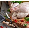 Chicken Roaster w/ Carving Knife, Grilling Accessories Kit