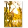 Ariane Moshayedi Green Leaf Canvas Print