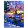 David Lloyd Glover Snowy Park Canvas Print