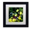 Kurt Shaffer 'Doris Longwing Butterfly on Orchid' Matted Framed Art