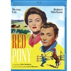 The Red Pony BD