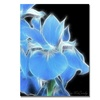 Kathie McCurdy Big Blue Iris Canvas Print