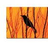 Patty Tuggle Blackbird Dreams Canvas Print