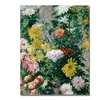 Gustave Cailebotte White and Yellow Chrysanthemums Canvas Print
