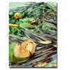 Ariane Moshayedi Coconut Jungle Canvas Print