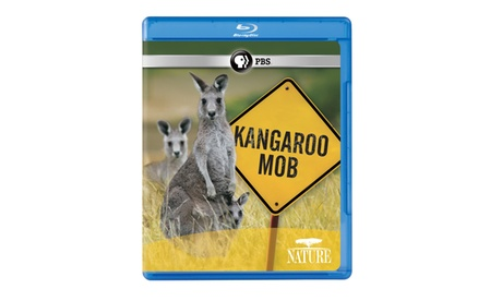 NATURE: Kangaroo Mob Blu-ray 9c18760e-dfee-4e2a-ac5d-10a544d284fc