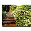 David Lloyd Glover Garden Staiway Tuscany Canvas Print