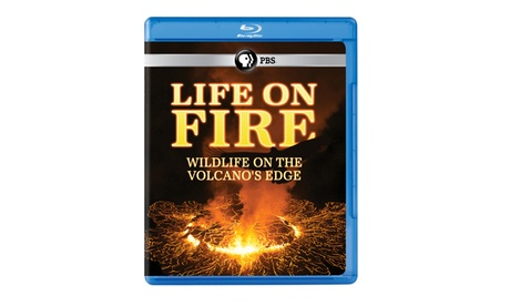 Life on Fire: Wildlife on the Volcano's Edge Blu-ray d5f216ec-128b-4e2d-89a2-8c3fb8960d32
