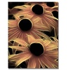 Kathie McCurdy Black Eyed Susans Abstract Canvas Print