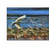 Lois Bryan Skimming Swan Canvas Print 16 x 24
