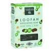 Earth Therapeutics Loofah Exfoliating Soap Aloe Vera & Kiwi - 4.2 OZ