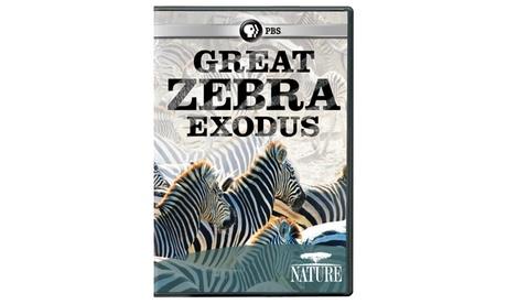 NATURE: Great Zebra Exodus DVD 979652d2-858d-498c-9799-be05cff634ee