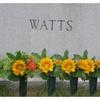 6 Pack Evelots Cemetery Grave Memorial Flower Vases