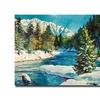 David Lloyd Glover Colorado Pines  Canvas Print