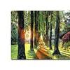 David Lloyd Glover Forest of Enchantment Canvas Print