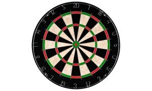 Champion Tournament Bristle Dartboard