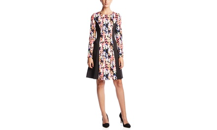 SPENSE Long Sleeve Paneled Fit and Flare Dress