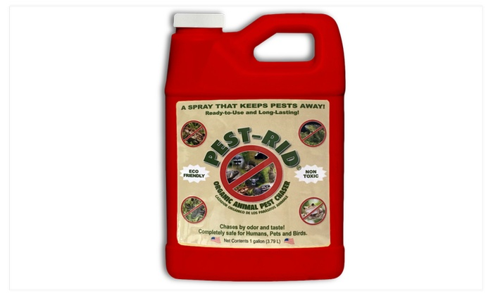 Pest-Rid, One Gallon Ready-to-Use Refill