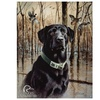 Ducks Unlimited Great Retrievers
